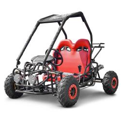 Buggy - Kart  Buggy enfant 110cc 2 places