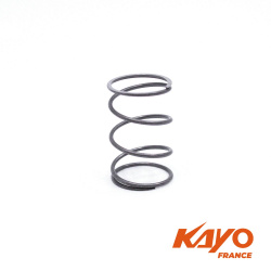 ZF / Carters moteur Ressort vidange quad KAYO