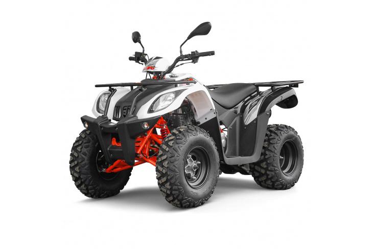 Quad 200cc homologué - KAYO AU200