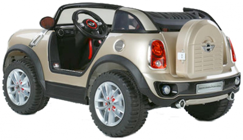 mini beachcomber avec t l commande voiture lectrique pour enfant euroimportmoto dirt bike. Black Bedroom Furniture Sets. Home Design Ideas