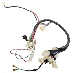 Pièces quad homologués Faisceau électrique EGL 50