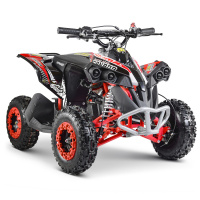 Pocket quad | 50cc