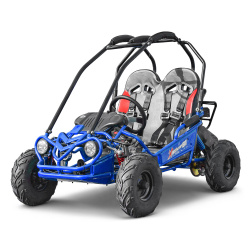 Buggy - Kart Buggy enfant 160cc 2 places