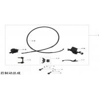 C / Système frein arrière